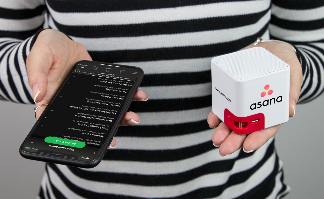 Cube - Custom Speakers
