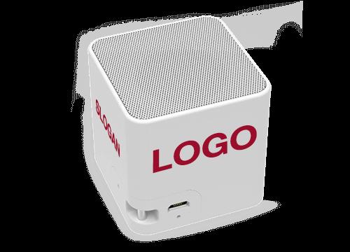 Cube - Corporate Speakers
